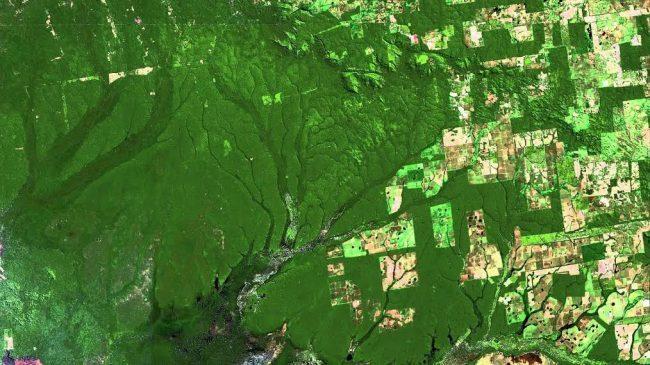 Brasil declinó organizar en 2019 la 25 Conferencia sobre Cambio Climático