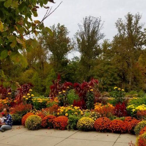 Un secreto bien guardado es el Jardín Botánico de Wheaton