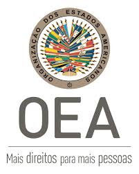 OAS Electoral Observation Mission in Brazil