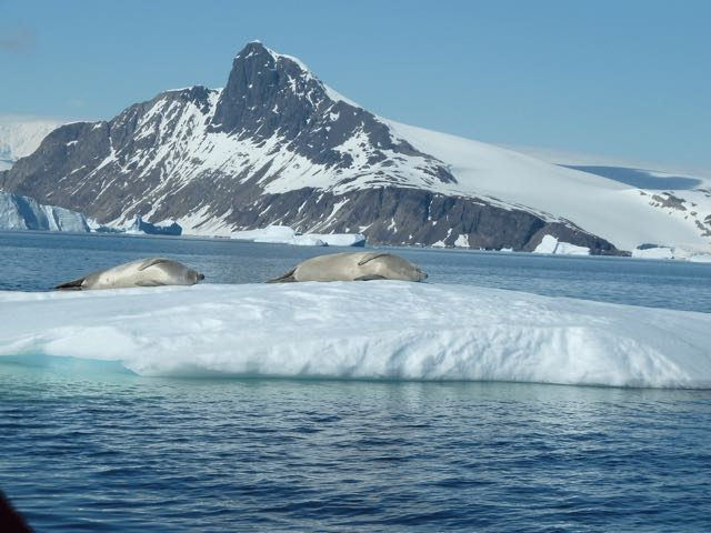 La Antártida (II)