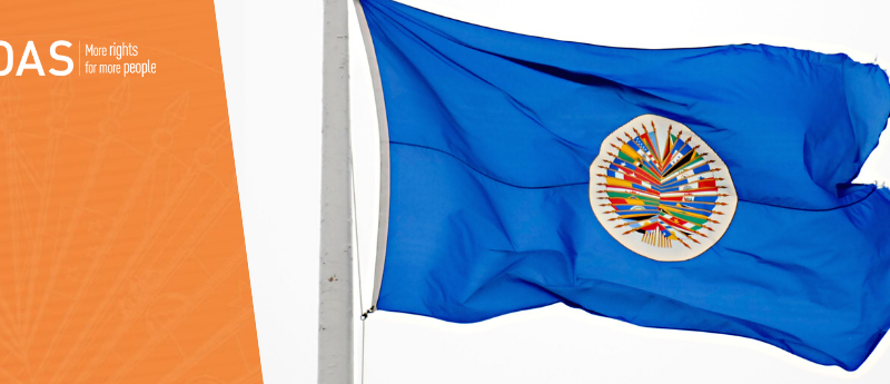 OAS : Honduras for March 14 Primary Elections